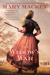 The Widow's War, a novel by Mary Mackey