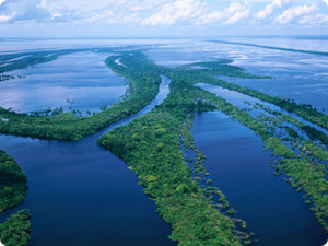Amazon River, Welcome to the Writer's Journey